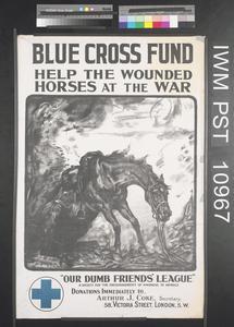 Blue Cross Fund