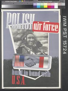 Polish Air Force - Hand in Hand with USA