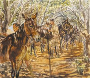Cypriot Soldiers Grooming Mules