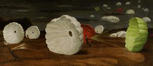 A Parachute-landing