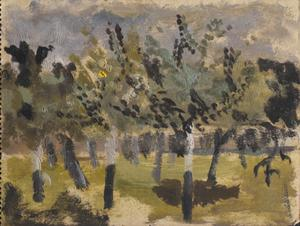 Orchard: Series of sketches for work in IWM