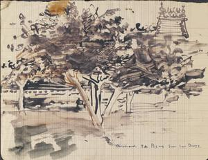 Orchards: St Pierre Sur Les Dives : Series of sketches for work in IWM