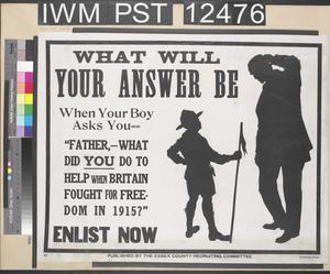 What Will Your Answer Be - What Did You Do to Help When Britain Fought for Freedom in 1915 ?