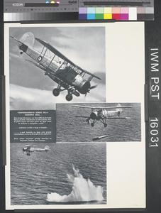 Torpeamento Aéreo Pela Marinha Real [Air Torpedoes for the Royal Navy]