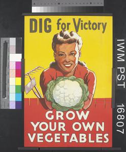 Dig for Victory - Grow Your Own Vegetables