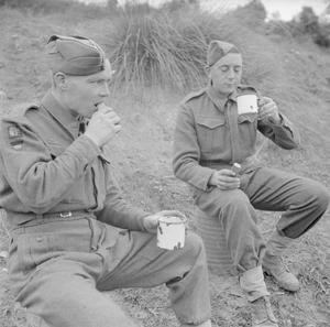 THE BRITISH ARMY IN ITALY 1943