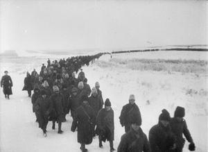 THE BATTLE OF STALINGRAD, AUGUST 1942 - FEBRUARY 1943