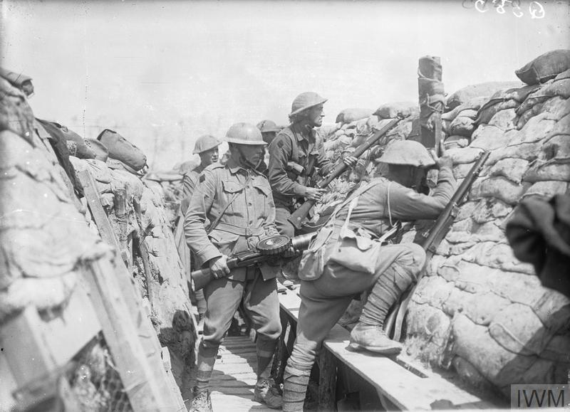 THE AUSTRALIAN IMPERIAL FORCE ON THE WESTERN FRONT, 1916-1918.
