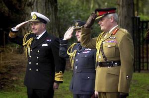 OPERATION TELIC:  BRITISH FORCES IN IRAQ, 2003