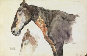 Mustard Gas: Two Sketches to Illustrate the Effects of Mustard Gas on Horses