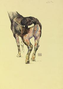 Mustard Gas: Sketch to Illustrate the Effect of Mustard Gas on Horses