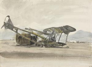 A Fallen Aeroplane at Semakh