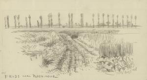 Fields near Poperinghe, August 7 1917