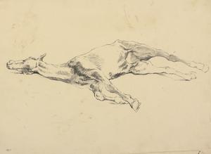 Study of a Sick Horse
