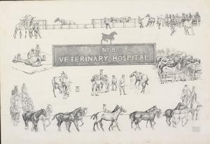 A Design for a Calendar for No. 8 Veterinary Hospital for the Year 1919