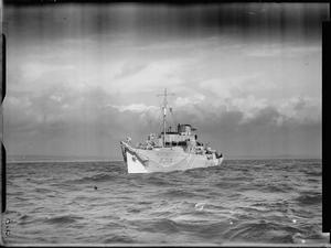 HMS POPPY