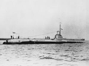 HMSM SHARK