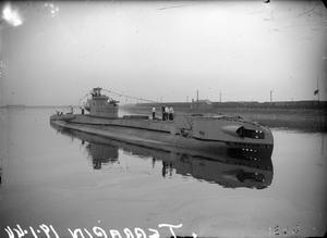 HMSM TERRAPIN