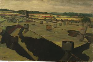 A View across Camouflaged Roofs