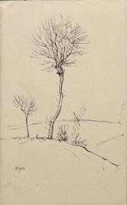 Trees near Hesdin