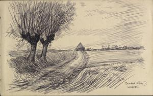 Road, trees and landscape near Linghem