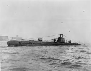 HMSM SAFARI
