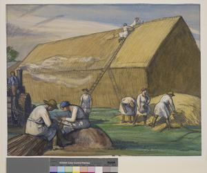 Thatching Flax for Aeroplanes