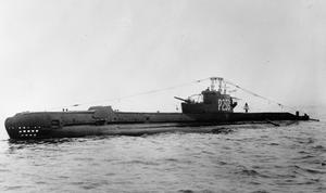 HMSM P 259