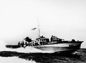 MTB 449