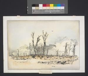 The Corner Of Bernafay Wood