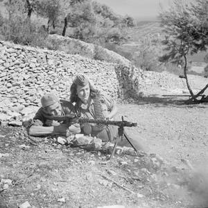 THE BRITISH ARMY IN THE ADRIATIC 1944