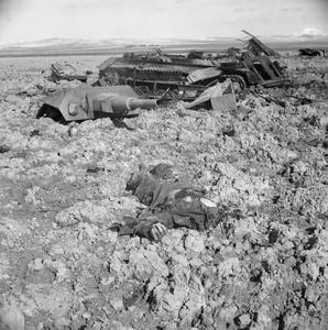 THE BRITISH ARMY IN THE TUNISIA CAMPAIGN, NOVEMBER 1942-MAY 1943