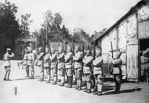 THE POLISH ARMY ON THE WESTERN FRONT, 1917-1918