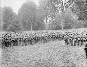 THE ALLIED ARMIES ON THE WESTERN FRONT, 1914-1918
