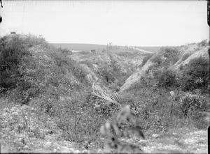 THE SOMME BATTLEFIELD AFTER THE BATTLE, 1917
