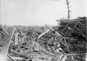 THE BATTLE OF PASSCHENDAELE, JULY-NOVEMBER 1917