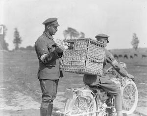 THE ROYAL ENGINEERS SIGNALS SERVICE ON THE WESTERN FRONT, 1914-1918