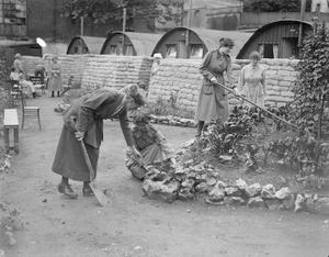 WOMEN'S SERVICES ON THE WESTERN FRONT, 1914-1918