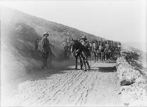 THE BRITISH ARMY IN THE SINAI AND PALESTINE CAMPAIGN, 1915-1918