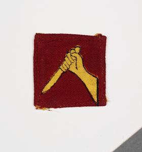 badge, formation, Indian, 19th Indian Division