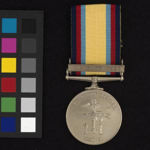 The Gulf Medal (1990-1991)