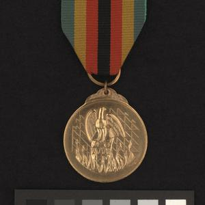 Zimbabwe Independence Day Medal
