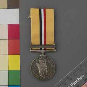 The Iraq Medal (2003)
