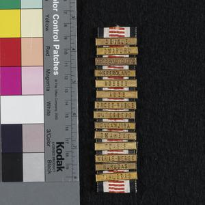 Ribbon for the Medal for German South West Africa with 14 clasps