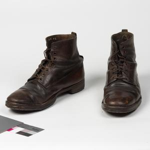 Boots, ankle length (brown): Officer's