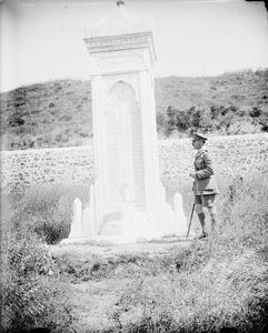 THE BRITISH ARMY IN THE MEDITERRANEAN, 1919-1939
