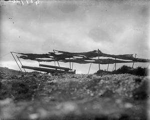 CAMOUFLAGE DURING THE FIRST WORLD WAR