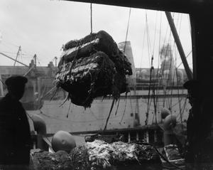 THE MERCHANT NAVY ON THE HOME FRONT, 1914-1918