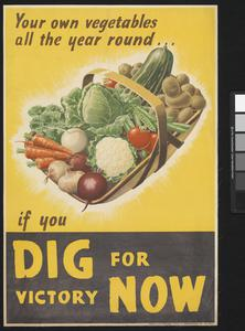 Your Own Vegetables All the Year Round - If You Dig For Victory Now