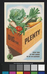 Dig For ... Plenty